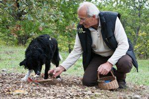 Dordogne - Trueffelzüchter mit Hund