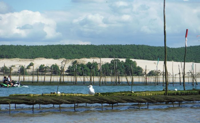 arcachon-mit-blick-dune