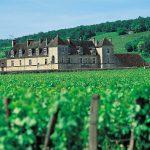 burgund-chateau-vougeot