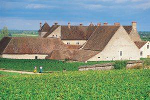 burgund-clos-vougeot