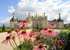 Blumen im Schloss Chambord